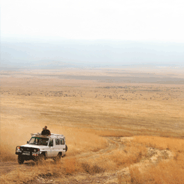 Tanzania Travel Tours