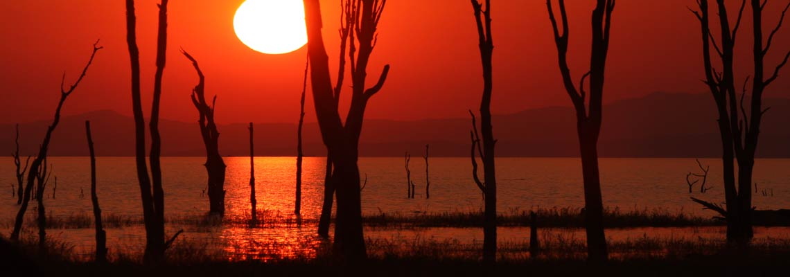 Best Zimbabwe Safari, Zimbabwe Safari Lodges